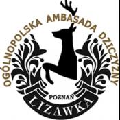 Lizawka300x300